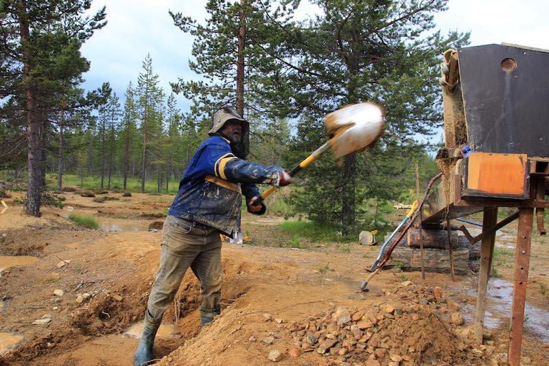 Lappland Goldrausch