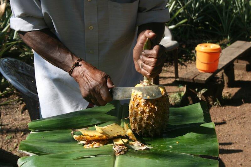 Ananas Sri Lanka