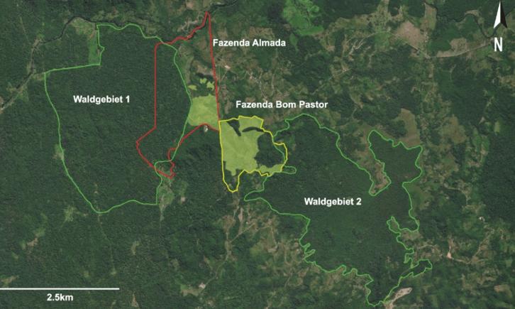 Weltwach Wald Lage