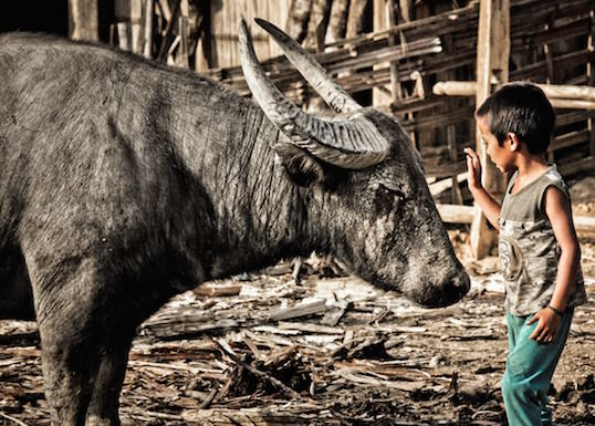 Erik Lorenz Streifzug durch Laos