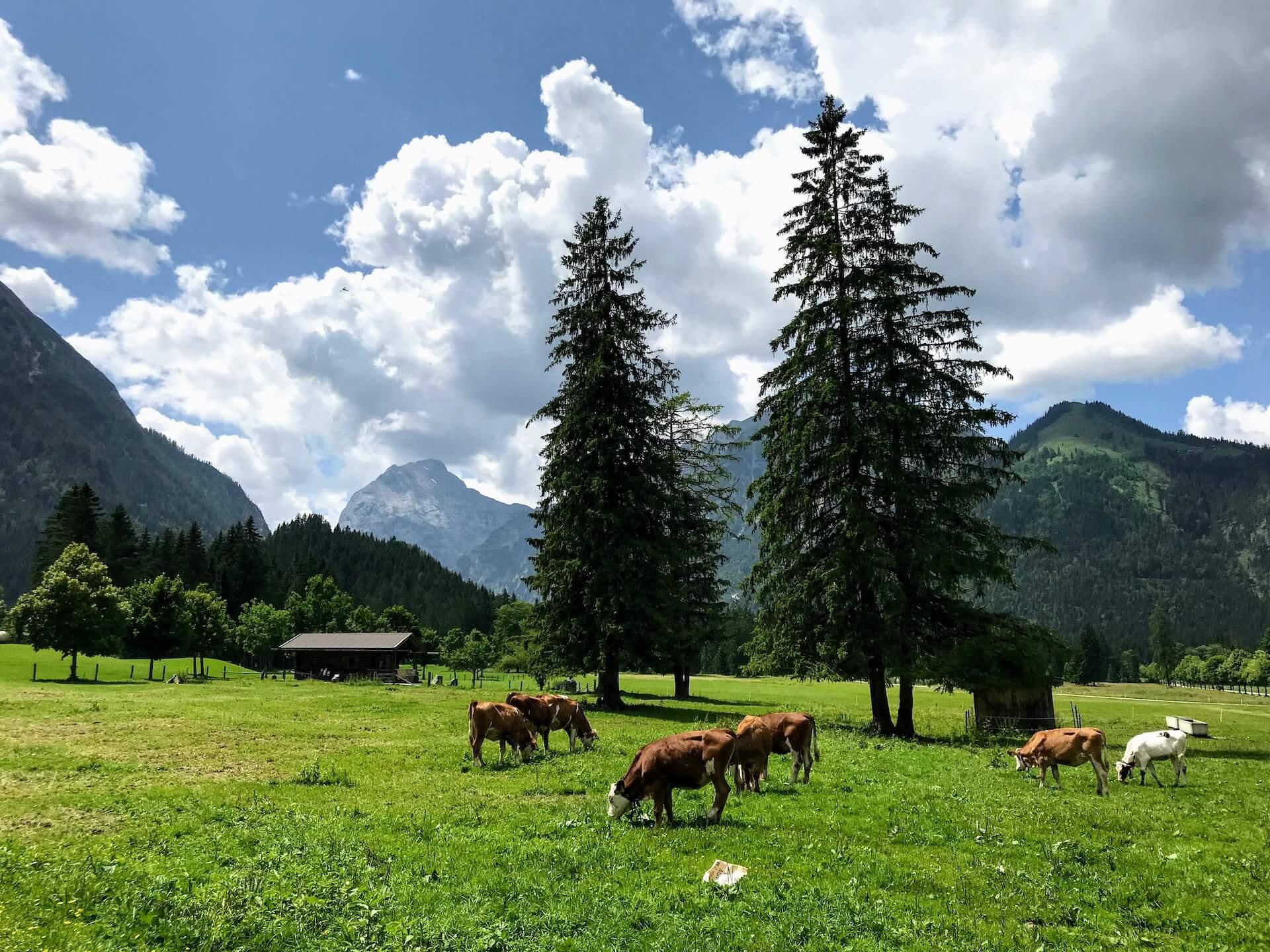 Österreich Karwendel